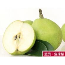 云南特产呈贡宝珠梨5斤 新鲜水果香甜青皮脆梨雪梨 现摘