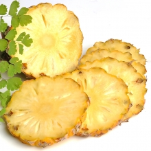 泰国小菠萝 进口小菠萝新鲜水果 普吉岛迷你小菠萝 凤梨