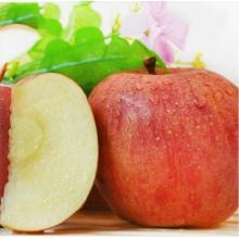 云南昭通冰糖心苹果30个野生丑苹果脆甜吃的新鲜水果有机绿色苹果
