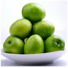 云南元谋特产牛奶蜜枣大青枣3斤包邮新鲜水果脆甜鲜枣子