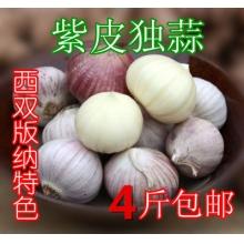 云南西双版纳特产 农家紫皮蒜 独头大蒜 大个独头蒜 蒜香浓郁 250g